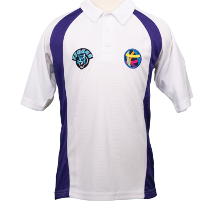 PE-Shirts-TIGERS